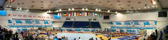 Varna International Acrobatic Cup,