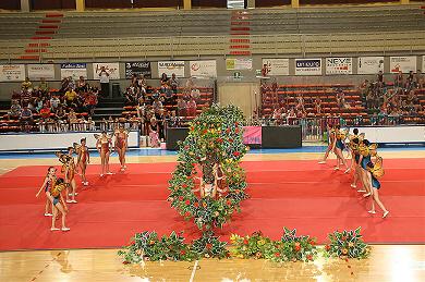 FUNtastic Gym 06, Borgomanero, Saggio 2013, Cartoline dal mondo, Specialistico, Avanzato Junior